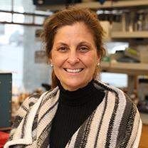 Melissa Grigione